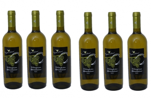 FALANGHINA I.G.P. BENEVENTANO 75 cl (Carton of 6 pcs)