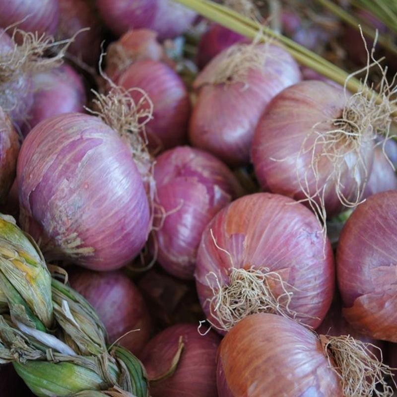 Trenza de cebollas