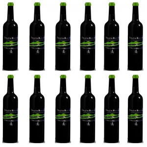 "OFFER - Wine Falanghina ""Le Terre del Normanno"" (12 pieces)"