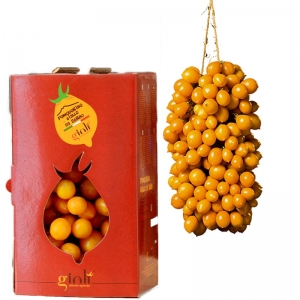 YELLOW TOMATOES BY SERBO DEL VESUVIO Kg. 1,5 - Available from September 2019