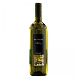 White wine Falanghina Beneventano IGP PENGUE  1 Lt  - Vinicola del Sannio
