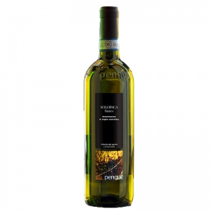 Vin blanc Solopaca Sannio D.O.P. PENGUE - Vinicola del Sannio